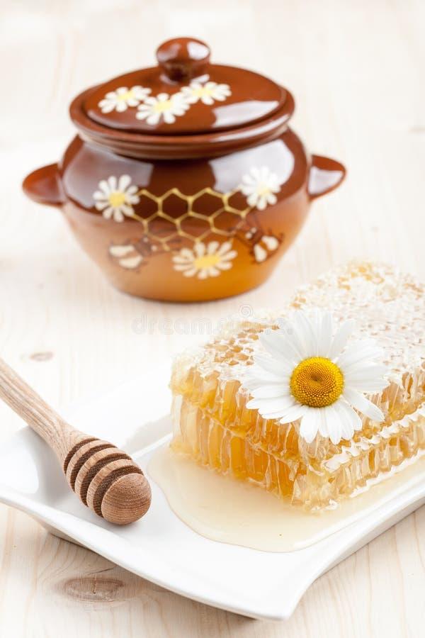 Гребень меда и бак меда стоковые изображения rf