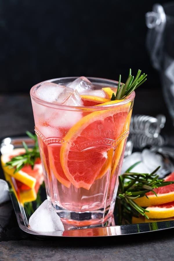Грейпфрут и свежее розмариновое масло ловят коктеиль в западню с соком, холодным освежающим напитком цитруса лета или напитком с  стоковое изображение rf
