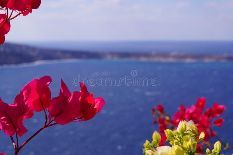 Греция остров Santorini стоковые фотографии rf