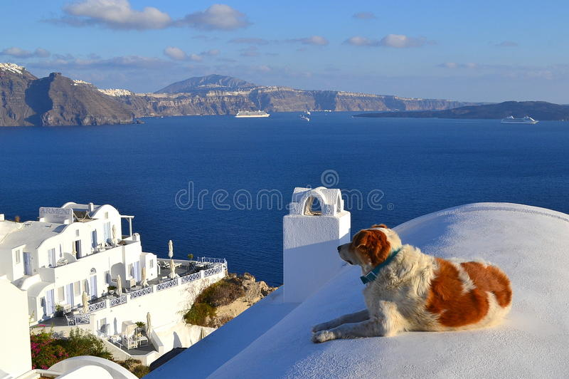 Греция, Santorini, Oia стоковые фото