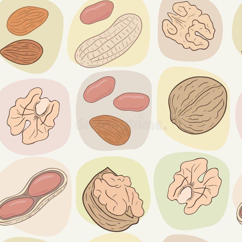 Грецкие орехи, арахисы, миндалины Сортированная чокнутая безшовная картина вектора иллюстрация вектора