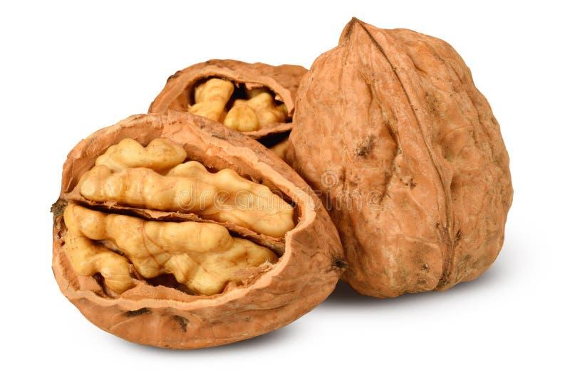 Грецкие орехи в группе изолированной на белизне стоковое изображение rf