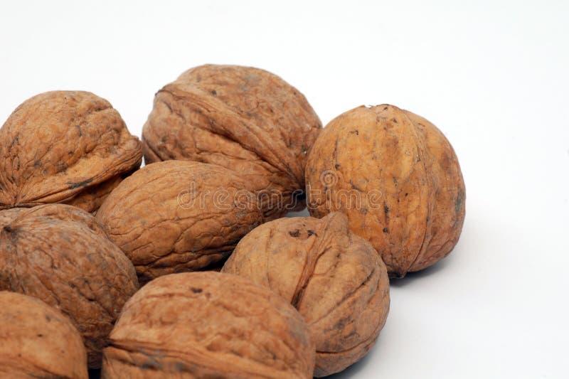 Download Грецкие орехи в раковине стоковое изображение. изображение насчитывающей плодоовощ - 40587687