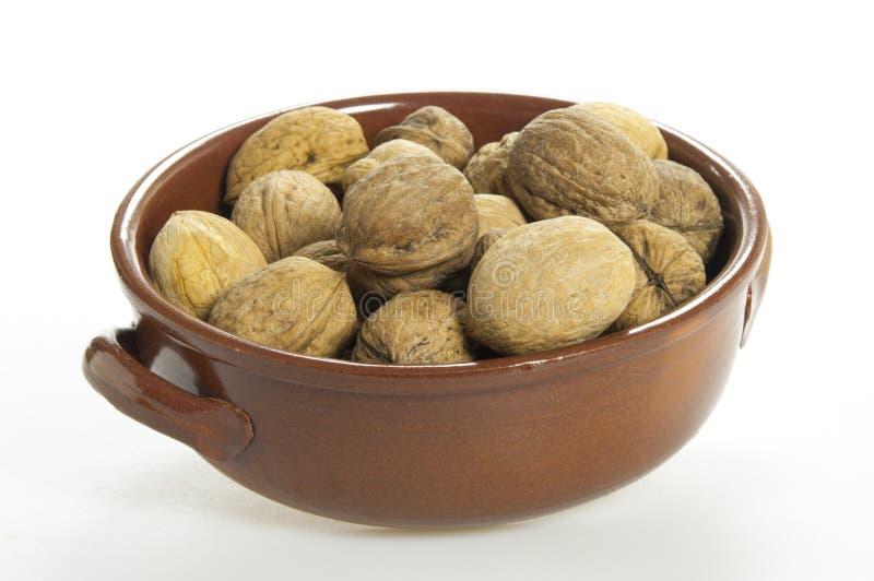 Грецкие орехи в чашке стоковое изображение
