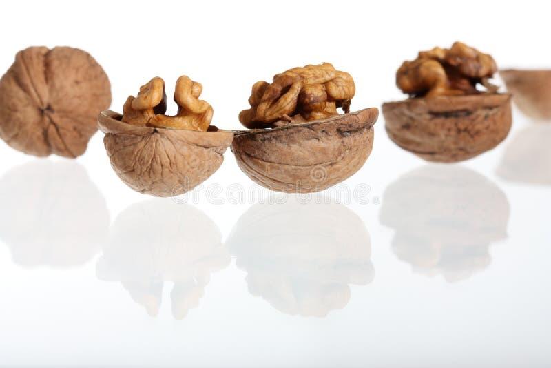 грецкие орехи группы стоковая фотография