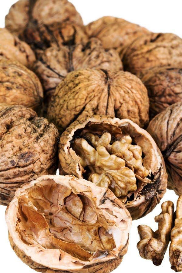 грецкие орехи изолированные предпосылкой белые стоковые фотографии rf