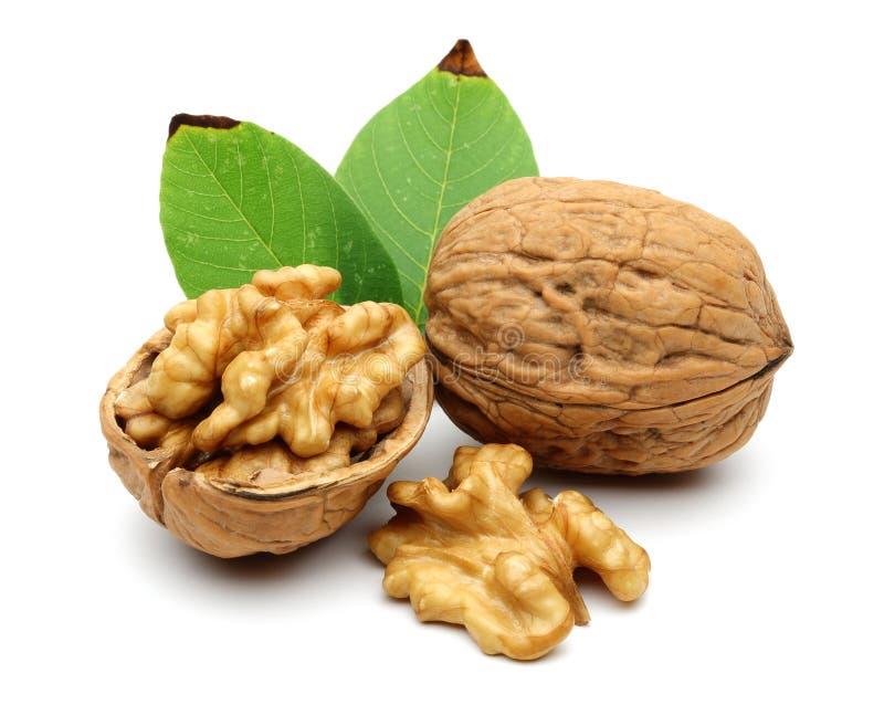 Грецкие орехи и листья стоковая фотография