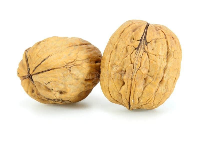 Грецкие орехи кучи стоковые фото