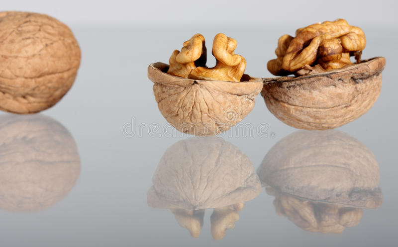 грецкие орехи отражения группы стоковые фото