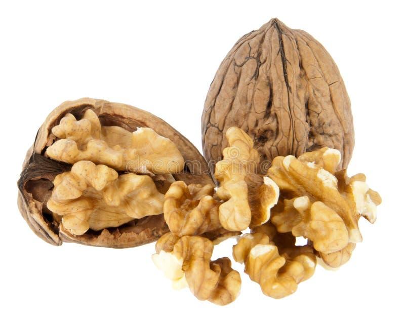 грецкие орехи предпосылки изолированные группой белые стоковые фото