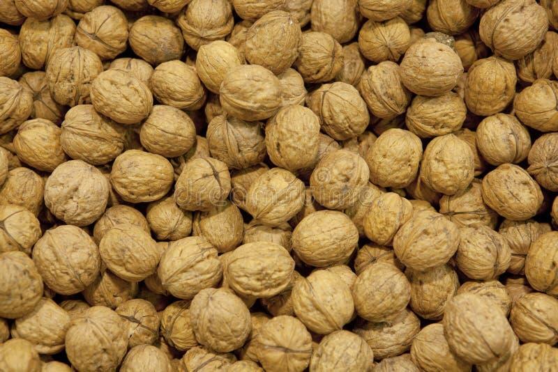 грецкие орехи предпосылки стоковая фотография rf