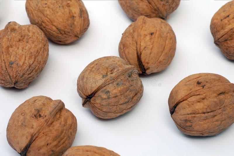 Download грецкие орехи предпосылки белые Стоковое Фото - изображение насчитывающей гайка, backhoe: 40587684