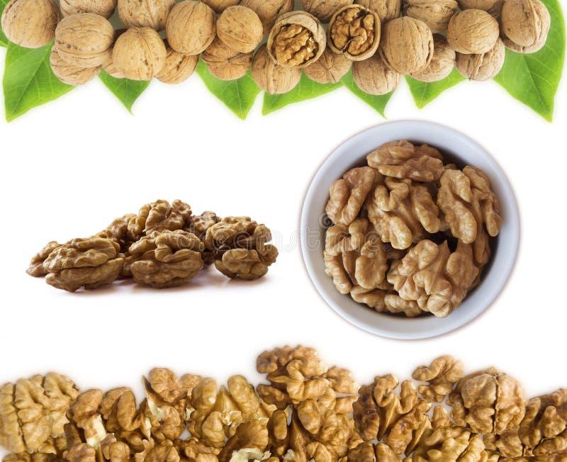Грецкие орехи стерженей изолированные на белизне Комплект грецкого ореха Грецкие орехи в шаре изолированном на белой предпосылке  стоковое изображение