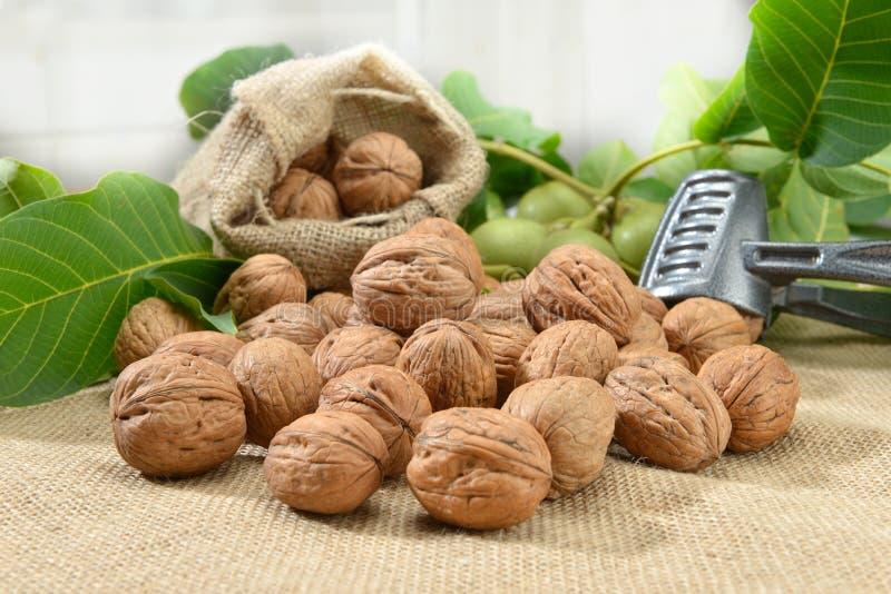 Грецкие орехи с лист и Щелкунчиком на дерюге стоковое фото rf