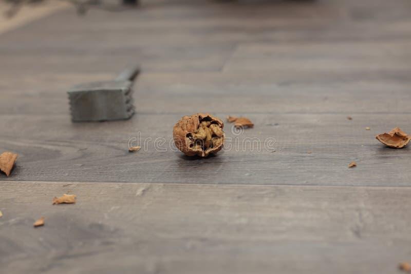 Грецкие орехи с Щелкунчиком стоковые фотографии rf