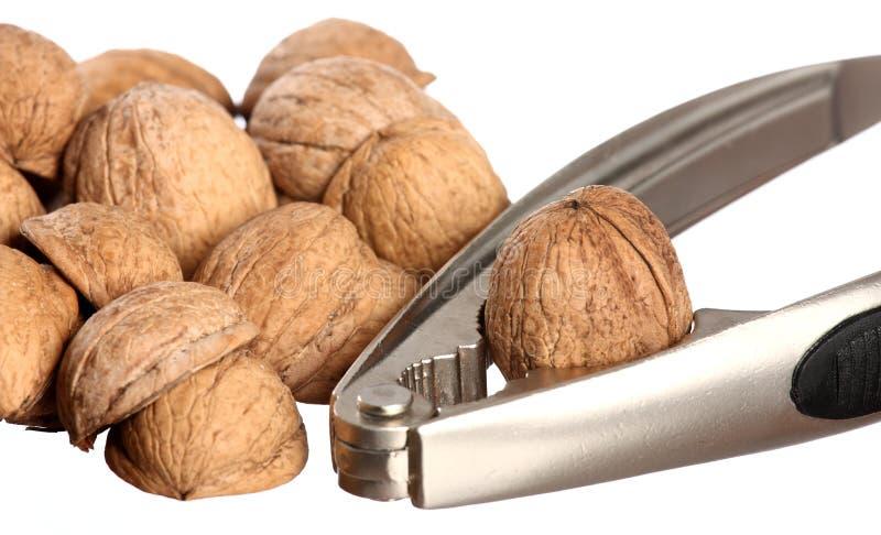 грецкие орехи Щелкунчика стоковое фото rf