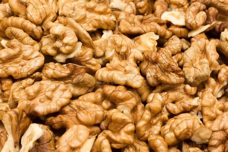 грецкие орехи стоковые изображения