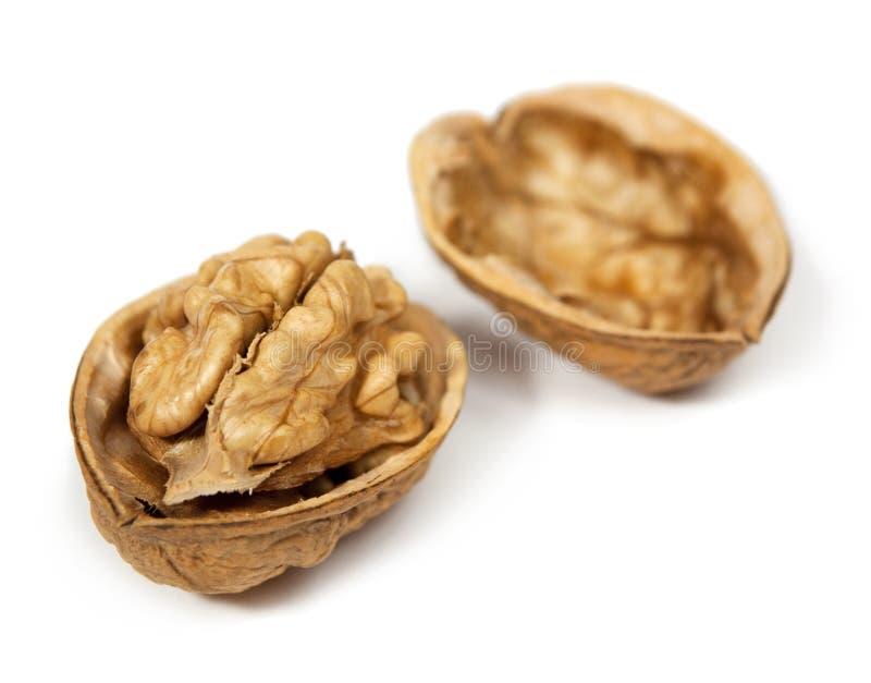 грецкие орехи стоковое фото