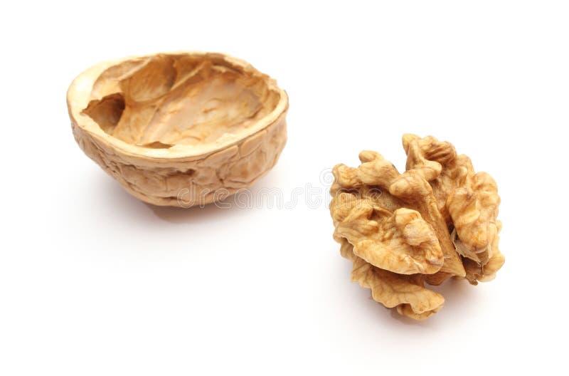 Грецкий орех без раковины и ореховая скорлупа на белой предпосылке стоковая фотография rf