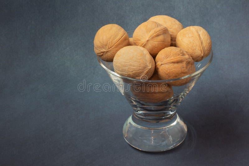 грецкий орех красив стоковое фото rf