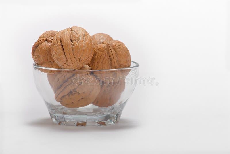 грецкий орех стоковое изображение