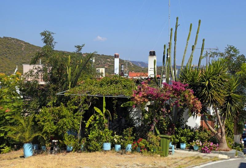 Греческий дом с цветками и деревьями стоковое изображение rf