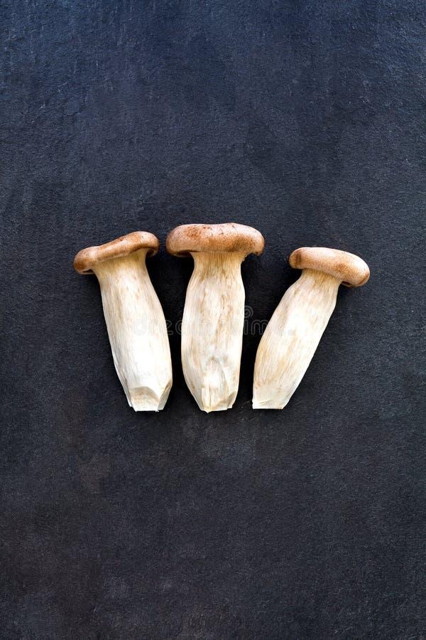 3 гриба устрицы короля на серой предпосылке шифера стоковое изображение rf