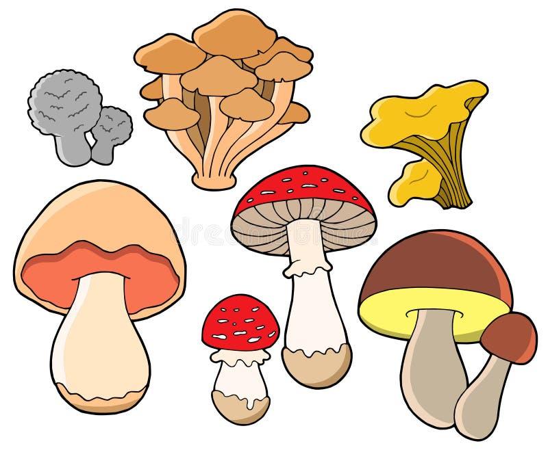 грибки собрания различные иллюстрация вектора