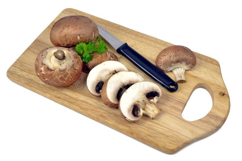 грибы доски коричневые деревянные стоковые изображения