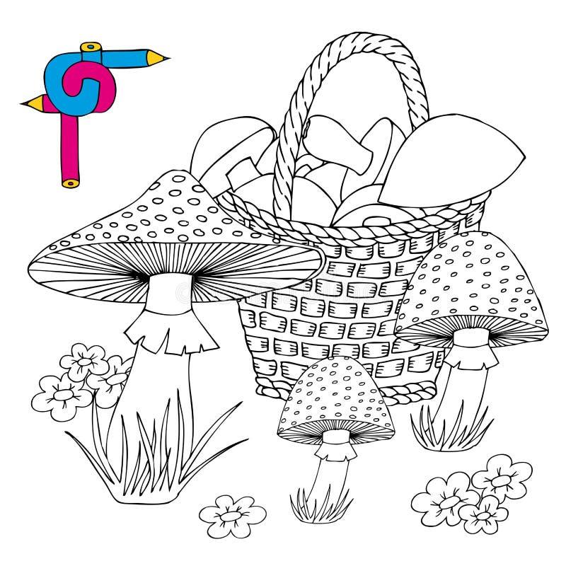 корзина с грибами раскраска картинки вредители фикуса