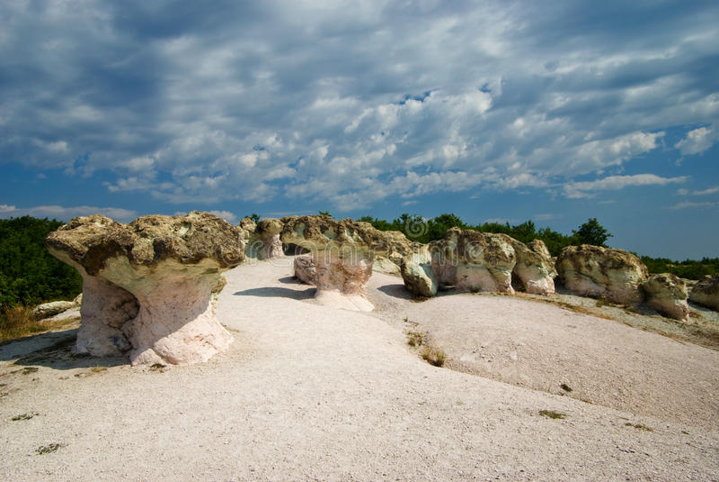Грибы камня стоковое фото
