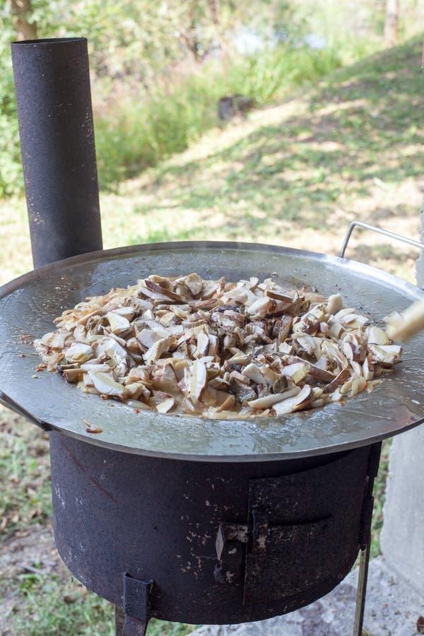 Грибы на сковороде стоковая фотография