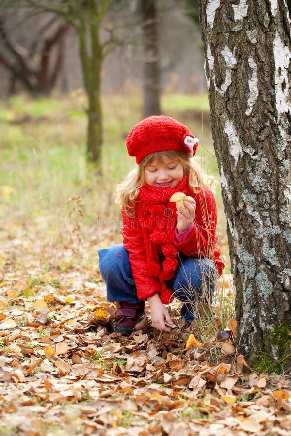 Грибы рудоразборки маленькой девочки. Концепция падения. стоковое изображение