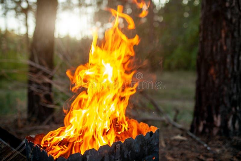 Гриль с большим огнем Взрыв пламен высоко Барбекю в природе стоковое изображение rf