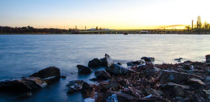 Грифон Burley озера стоковое фото