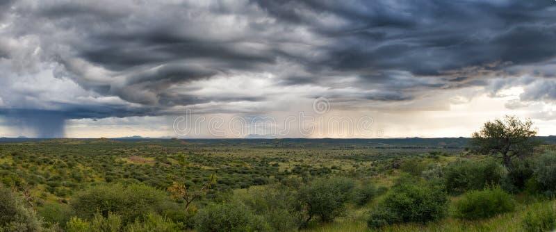 Гроза над намибийскими равнинами стоковое фото rf