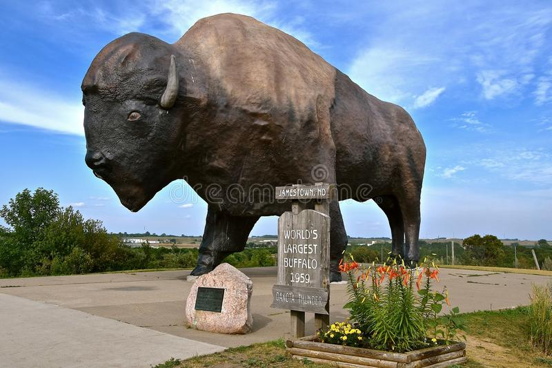 Гром Дакоты, буйвол миров самый большой стоковое изображение