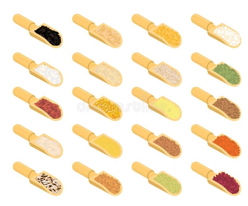 Гроуты в деревянном комплекте ветроуловителя Рис и чечевицы Красные фасоли и горохи иллюстрация штока