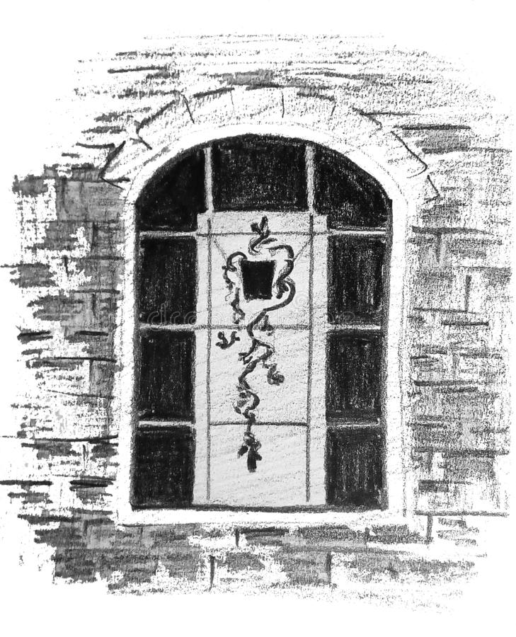 Грубое абстрактное изображение окна с цветком в баке Чертеж карандаша иллюстрация штока
