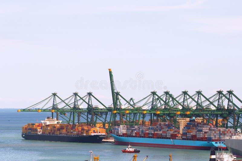 грузовой контейнер вытягивает шею корабли gantry огромные стоковое фото rf