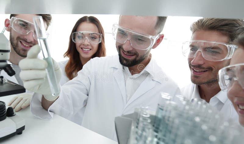 Группа в составе аптекари работая в лаборатории стоковое фото rf