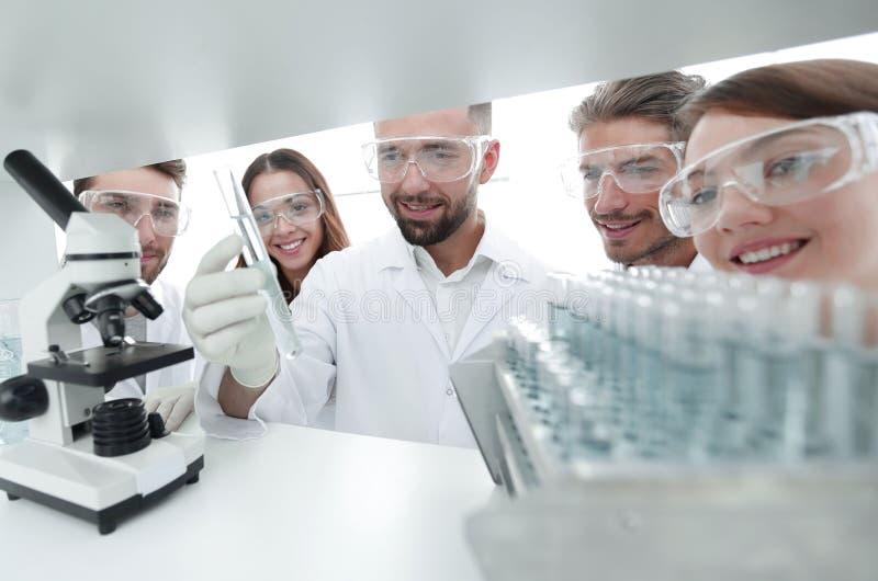 Группа в составе аптекари работая в лаборатории стоковые изображения rf