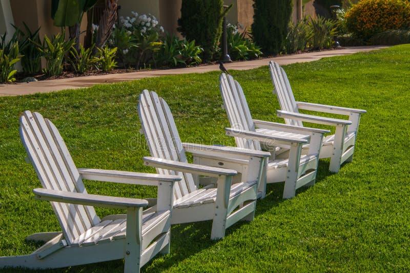 Группа в составе 4 белых стуль Adirondack на зеленой лужайке стоковые фото