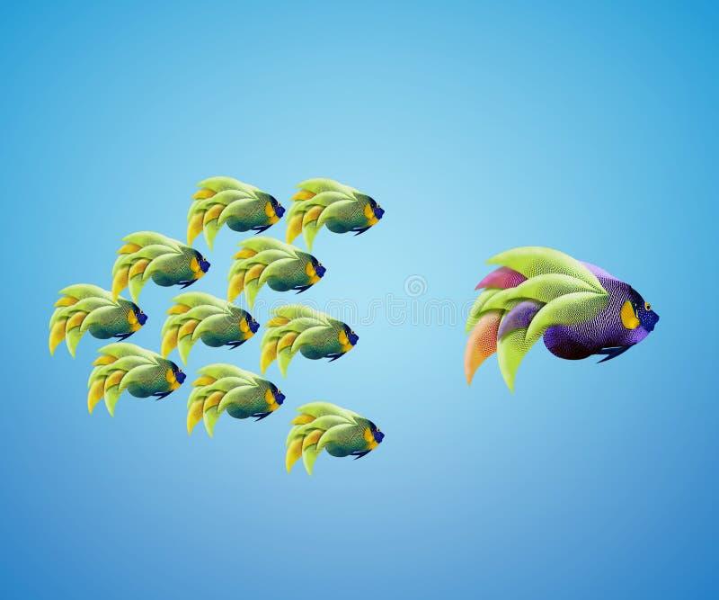 Группа в составе большого angelfish ведущая angelfish стоковая фотография rf