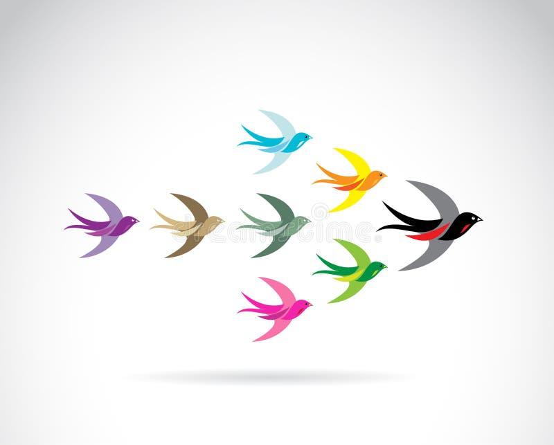 Группа в составе вектора красочные птицы ласточки бесплатная иллюстрация