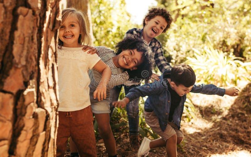 Группа в составе дети играя прятк стоковое фото