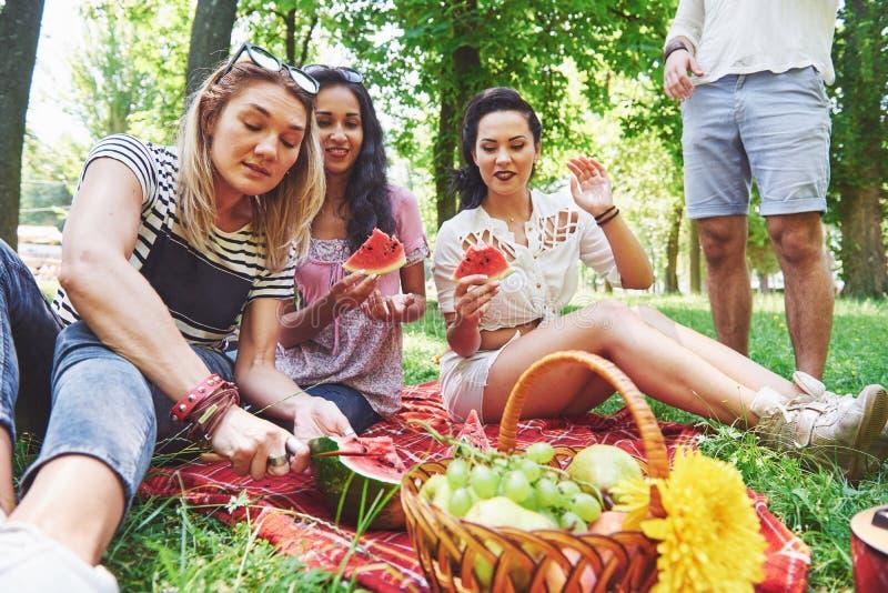 Группа в составе друзья имея пикник в парке на солнечный день - людях вися вне, имеющ потеху пока жарящ и ослабляющ стоковое изображение