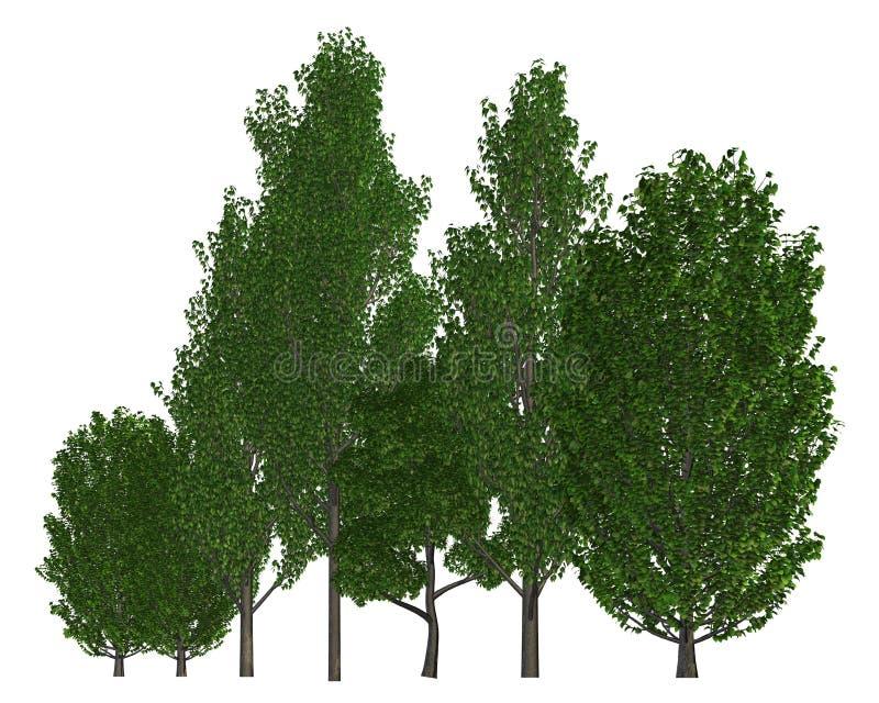 Группа в составе деревья изолированные на белой иллюстрации 3d бесплатная иллюстрация