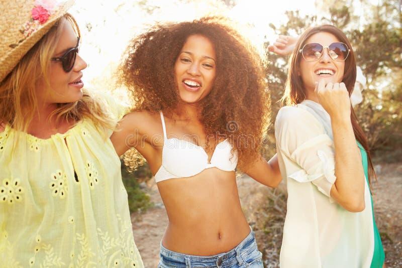 Группа в составе женские друзья имея партию на пляже совместно стоковые изображения