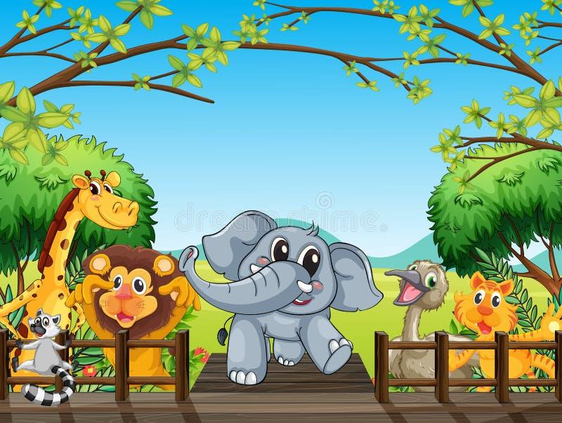 Группа в составе дикие животные на мосте в лесе бесплатная иллюстрация